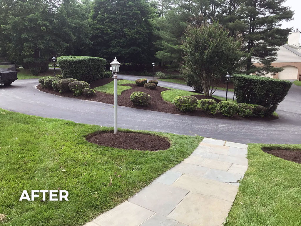 Mulch And Deep Edge – 3 (After)